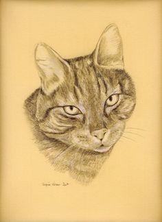 Portrait animalier au crayon, réalisé d'après photographie, sur commande.  www.virginiewibaux.com