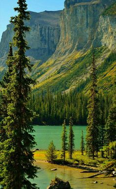 Photo taken at Maligne Lake located in Alberta, Canada Beautiful World, Beautiful Places, Beautiful Pictures, Landscape Photography, Nature Photography, Adventure Is Out There, Science And Nature, Nature Pictures, Belle Photo