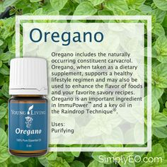 Oregano includes the naturally occurring constituent carvacrol. Oregano, when taken as a dietary supplement, supports a healthy lifestyle regimen and may also be used to enhance the flavor of foods and your favorite savory recipes.