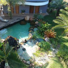 Backyard Beach, Backyard Paradise, Backyard Garden Design, Garden Pool, Water Garden, Swimming Pool Pond, Natural Swimming Pools, Spring Spa, Home Planner