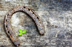 A Mom's Quest to Teach: Like a Lion or a Lamb: Free March Writing Prompts – Time for language arts? Why not try new writing prompts for your homeschooling lessons? First Flowers Of Spring, Spring Social, Beautiful Vacation Spots, St Patrick Day Activities, Like A Lion, Elephant Bracelet, Irish Blessing, Green Glitter, The St