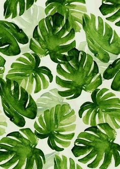 50 Ideas Flowers Tropical Illustration Plants For 2019 Textures Patterns, Print Patterns, Pattern Print, Pattern Fabric, Leaf Patterns, Fun Patterns, Summer Patterns, Wood Patterns, Floral Patterns
