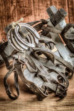 Old pack saddle and horse shoes