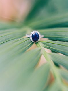 Photography: Perry Vaile Photography - perryvaileblog.com Read More on SMP: http://www.stylemepretty.com/2017/03/03/glam-sea-island-wedding/