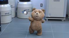 Ted 2 (magyar szinkronos előzetes)