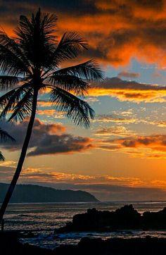 Clark Little Photography Amazing Sunsets, Beautiful Sunset, Amazing Nature, Beautiful Beaches, Beautiful World, Nature Pictures, Cool Pictures, Beautiful Pictures, Landscape Photography