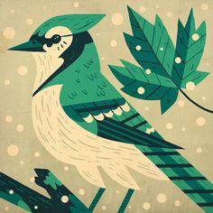 Folio illustration agency, London, UK | Owen Davey