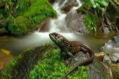 24 - La belleza del entorno es increíble...