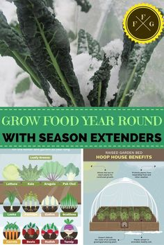 How to Grow Food 365 Days a Year - Family Food Garden has provided a comprehensive guide on how to keep a garden productive year round. Included in the guide are recommendations according to type of vegetable and methods of retaining heat in the garden. The methods range from a simple layering of mulch to greenhouse type structures, so there is a method for every type of climate. Images by http://familyfoodgarden.com