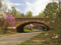 """Colonial Parkway. We LOVE the blooming trees and immense history that this byway holds. It's a """"must"""" if you find yourself in or around Williamsburg or Yorktown, Virginia."""