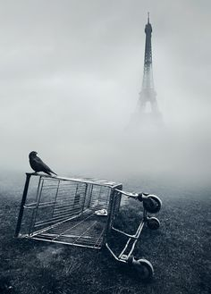what a contrast to the traditional portral of Paris, and the Eiffel tower.