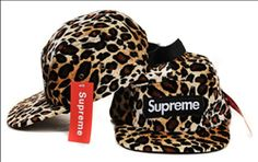 4b7e89bf961 14 Best Supreme 5 Panel Camp Cap images
