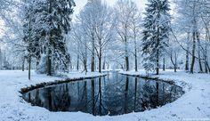 Frozen forest by Harold Spierenburg on 500px