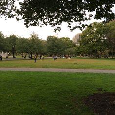 Common Park #boston