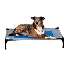 "K&h Pet Products Coolin' Pet Cot Large Gray/Blue 30"" x 42"""