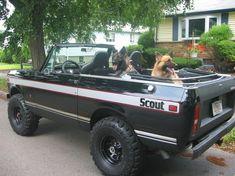 1978 International Scout