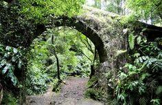 Rota da Água - Janela do Inferno   Trilhos dos Açores