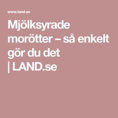 Mjölksyrade morötter – så enkelt gör du det | LAND.se