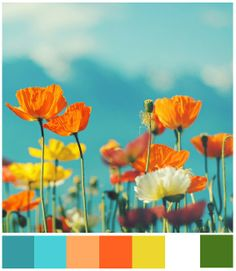 Poppies :) oh and Daisies ;) and um I love turquoise and orange and green and meadows...and kisses in meadows ;) x