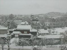 雪の松本城。2014/02/15 11:00現在の積雪は74cm。