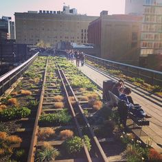 A 1 mile long park built on an elevated railroad trestle in Chelsea.