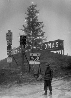 An American MP stands stands guard in front of a 65 ft. tree at the top of Radicosa Pass; 2500 ft. in the Appennine Mountains. Italy, December 18, 1944