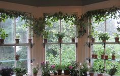 ♥ - add glass shelves to my windows