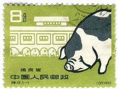 China postage stamp: green pig