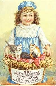 trade cards with cats - - Yahoo Image Search Results