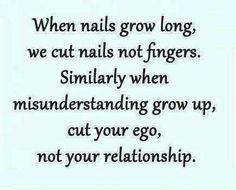 misunderstanding quotes                                                       …