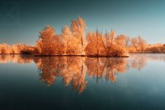 David Keochkerian photographie ~ Gold in the water