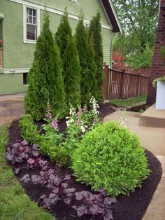 Front Yard Garden Design Save money and get great ideas for inexpensive landscape plants from the experts at HGTV Gardens. - Save money and get great ideas for inexpensive landscape plants from the experts at HGTV Gardens. Landscaping Shrubs, Garden Shrubs, Outdoor Landscaping, Lawn And Garden, Front Yard Landscaping, Outdoor Gardens, Landscaping Design, Natural Landscaping, Landscaping Software
