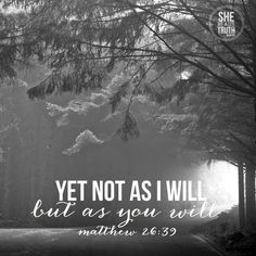 """Yet not as I will, but as you will"" Matthew 26:39 #SheReadsTruth"