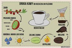 how coffee works! #infographics #coffee