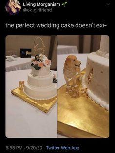 Cute Wedding Ideas, Perfect Wedding, Our Wedding, Dream Wedding, Wedding Meme, Funny Wedding Speeches, Funny Wedding Cakes, Creative Wedding Cakes, Wedding Goals
