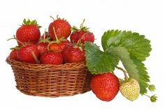 basket of strawberries - Google Search