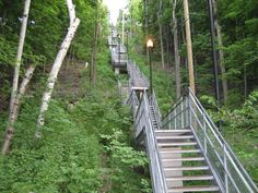 Dundurn street stairs up Hamilton mountain. Went up and down these a fair few times too. Whoa!