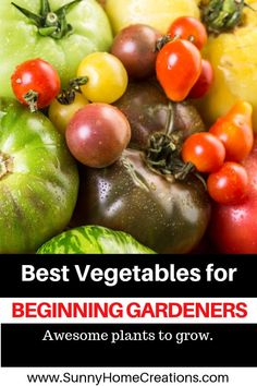 Best vegetables for beginning gardeners to grow in their food garden. Awesome plant ideas on what to grow when you are new to gardening. If you want to start a backyard garden, check this list out so you can have success the first year you garden. Preserving Tomatoes, Growing Tomatoes, Growing Plants, Edible Garden, Easy Garden, Herb Garden, Planting Vegetables, Vegetable Gardening, Tomato Farming