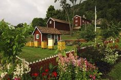 Swedish garden, beehives and all.