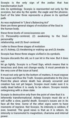 I hope I'm in the second phase at least I need to wake up because this sucks Scorpio Sagittarius Cusp, Scorpio Star, Scorpio Traits, Scorpio Zodiac Facts, Scorpio Love, Scorpio Quotes, Scorpio Woman, Scorpio Symbol, Aquarius
