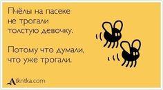 Пчелы на пасеке...