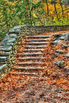 Autumn's Staircase - Autumn's colored leaves cover this aged stone staircase in a state park in upstate New York.