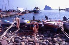 La Cucina Eoliana e Siciliana: tonno o pescespada con salmoriglio