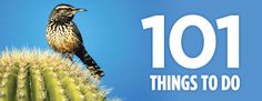 101 Things to Do in Tucson & Southern Arizona, Attractions & Events
