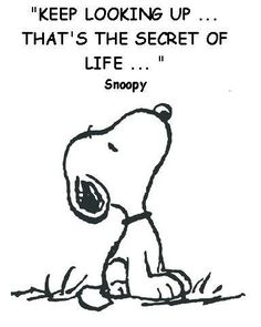Image result for peanuts quotes