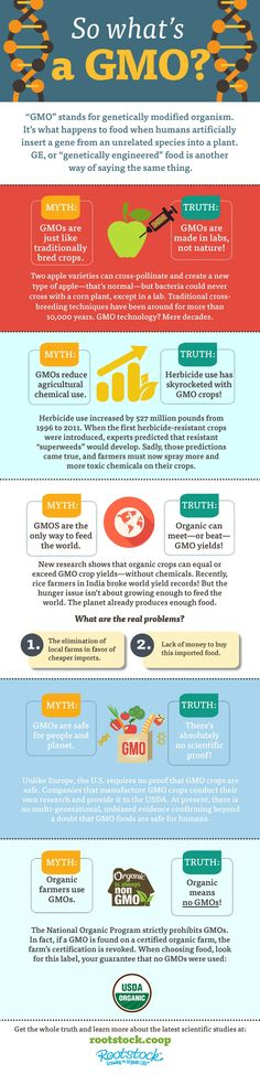 Here, we bust some of the biggest myths floating around about GMOs,