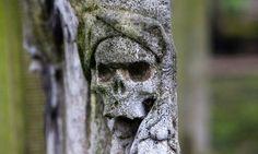 10 particolari macabri e raccapriccianti della morte in epoca Vittoriana 07