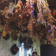 Drying herbs and flowers from the ceiling for home Apothecary. Wiccan, Magick, Witchcraft, Images Esthétiques, Witch Cottage, Witch Aesthetic, Kitchen Witch, Drying Herbs, Dried Flowers