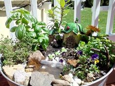 My mostly edible fairy garden with water feature. Thanks for the inspiration! #garden #ideas #plants #flower #gardenlife #mygarden #gardenstyles
