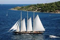 Image result for sailing schooner atlantic in auckland